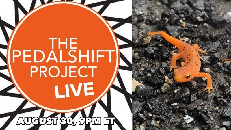 Pedalshift Live August 30